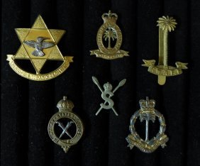 Collection Of British Colonial Badges