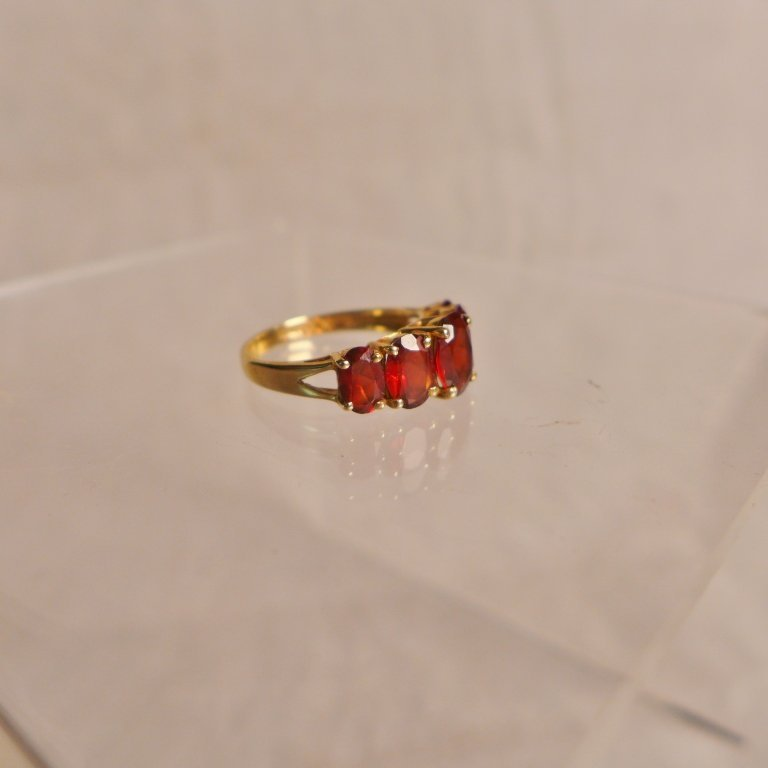 Gold & Garnet Ring - 3