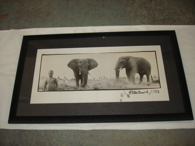 1011:  Peter Beard Photo, Elephant, sgnd & fingerprints