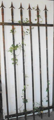 1007: Antique Iron Fence section, Arrowhead top