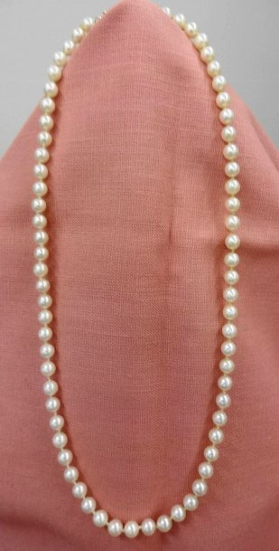 """Pearl Necklace, 14k gold Clasp, 18"""""""