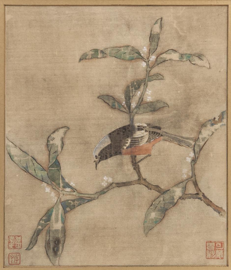 Song-Bird On Bough