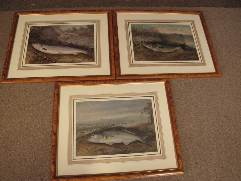 187: Three Framed & Matted Kilbourne Fish Prints