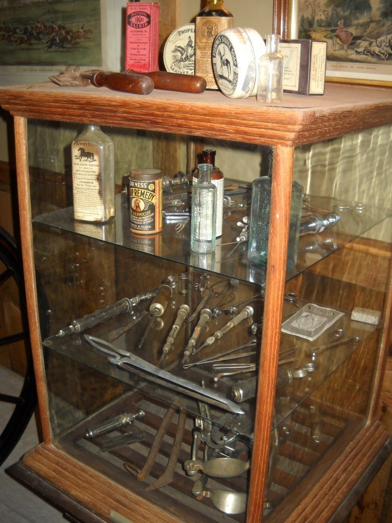 209: Antique Horse Veterinarary Equipment & Glass Case
