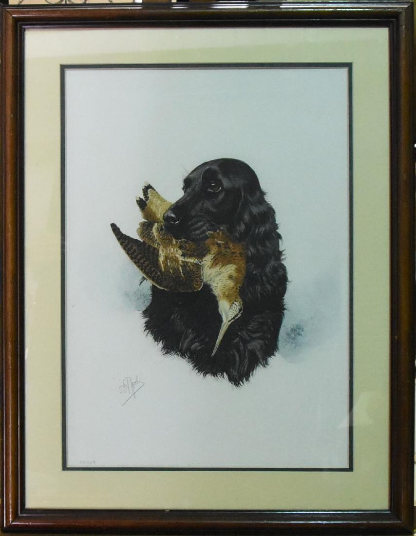 Signed and Numbered Lithograph spaniel and snipe