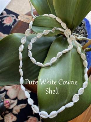 Pure White Cowrie Shell Necklace & Bracelet
