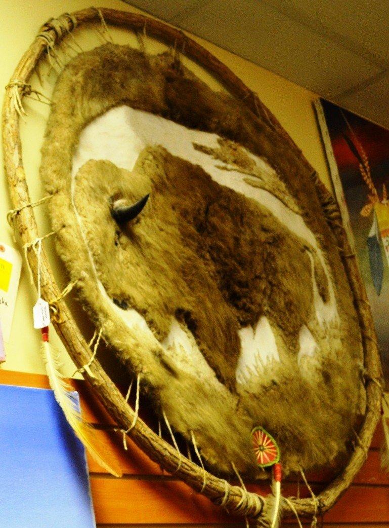 9: American Indian war shield skin - 2