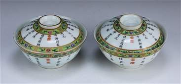 PAIR FINE CHINESE ANTIQUE FAMILLE ROSE PORCELAIN LIDDED