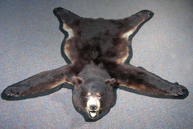 AUTHENTIC BLACK BEAR RUG