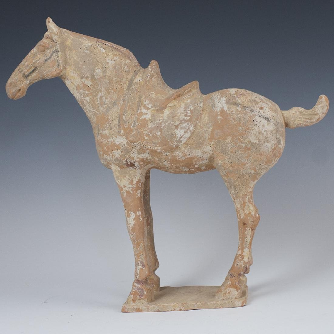 Chinese Tang Dynasty Terracotta Horse