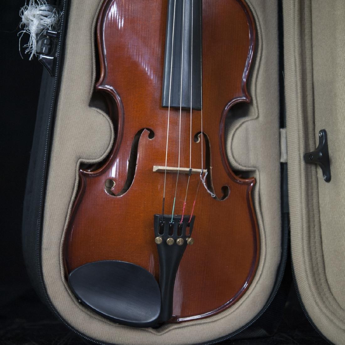 Palatino Wood Violin - 2