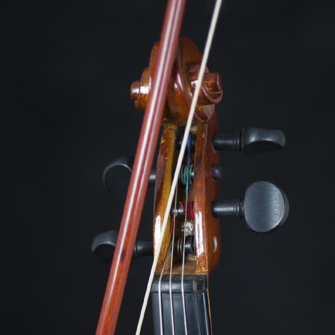 Palatino Wood Violin - 4