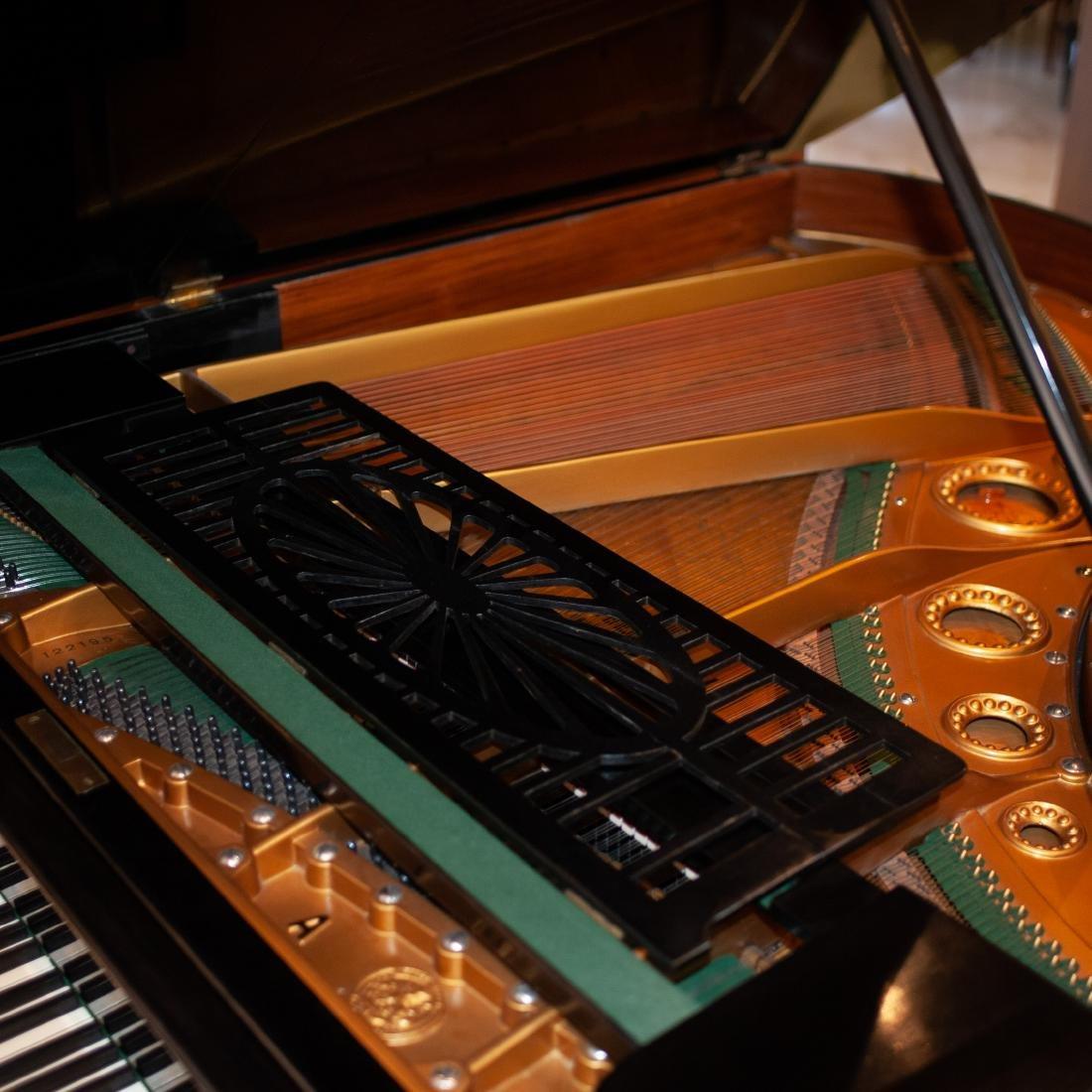 C. Bechstein Grand Piano - 6