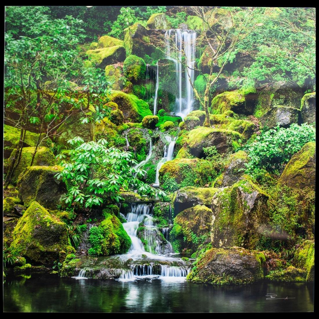 "Peter Lik ( B. 1959 Australia) ""Jade Garden"""