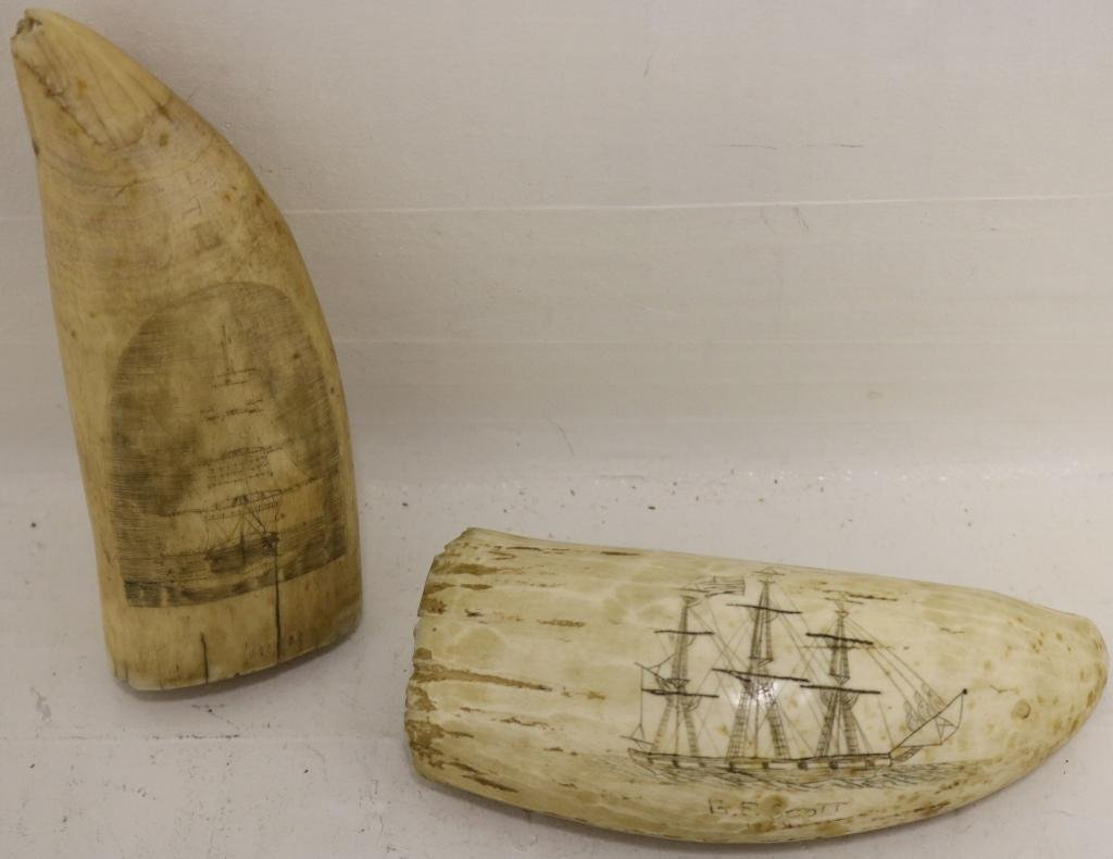 2 MID-19TH C SCRIMSHAW WHALE TEETH.  ONE DEPICTS