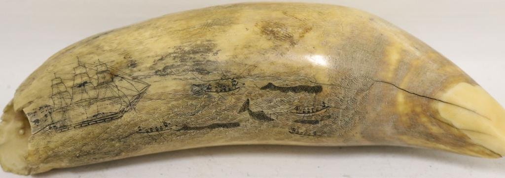 MID-19TH C SCRIMSHAW WHALE TOOTH DEPICTING A