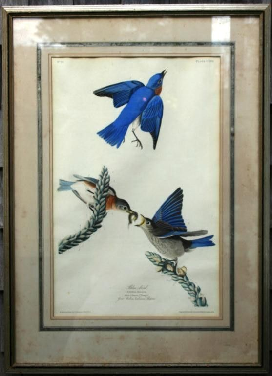 FRAMED AND GLAZED HAND COLORED ENGRAVING