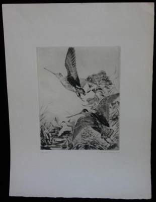 UNFRAMED ETCHING PENCIL SIGNED LOWER RIGHT