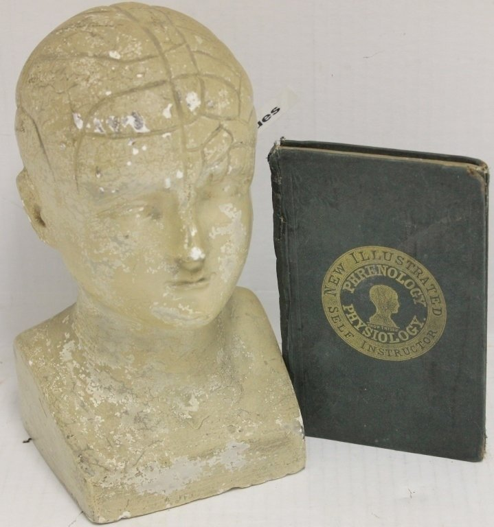 PHRENOLOGY PLASTER HEAD, 19TH C, MANUFACTURED