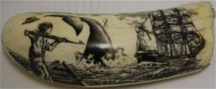"""IMPORTANT BULL WHALES SCRIMSHAWED TOOTH, 8"""""""