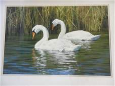 Donald Patterson Watercolor Swan Painting Franklin Mint
