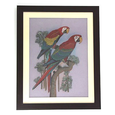 Colorful Parrots in a Tree Gemstone Painting w/ Frame