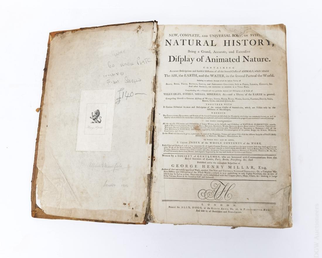 18th C. Vol., Natural History, Display of Animal - 2