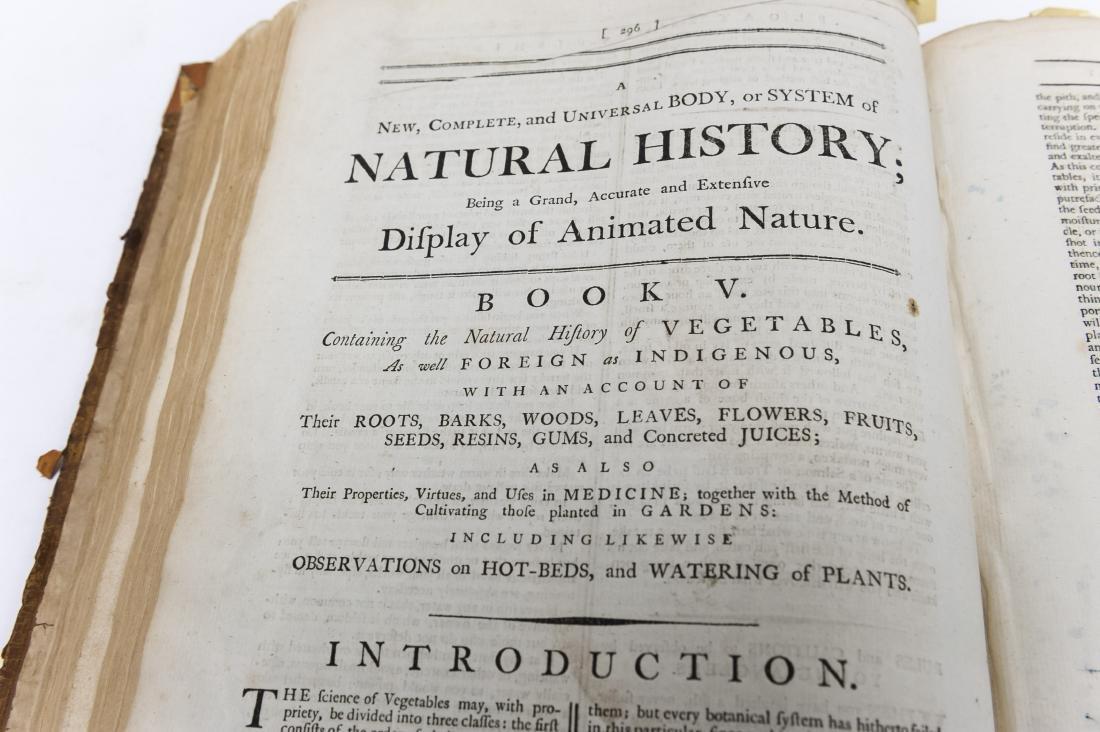 18th C. Vol., Natural History, Display of Animal - 5