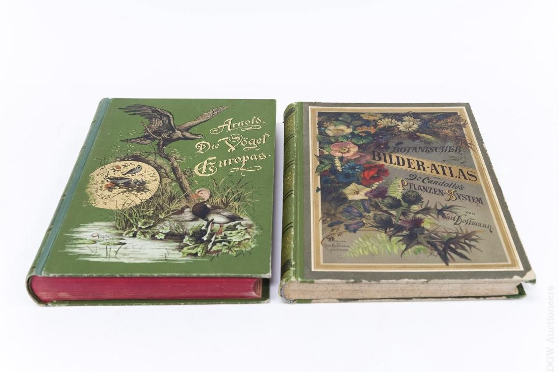 (2) Antiquarian German Illustrated Books.