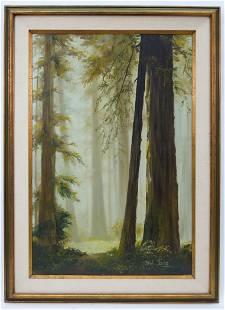 Oil on Canvas, Redwood Trees.