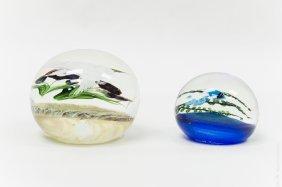 (2) Daniel Salazar  Art Glass Paperweights.