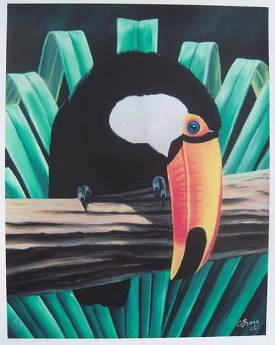 13T: CHARLES LYNN BRAGG TOUCAN HAND SIGNED LIMITED ED.