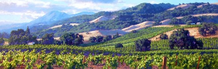 1W: JUNE CAREY - SONG OF THE WINE COUNTRY