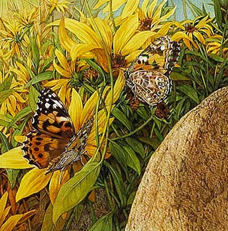 5W: BEV DOOLITTLE - PAINTED LADIES