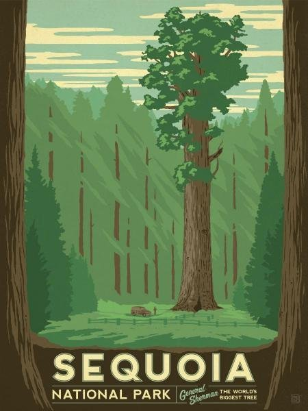 3S: ANDERSON DESIGN GROUP - SEQUOIA NATIONAL PARK