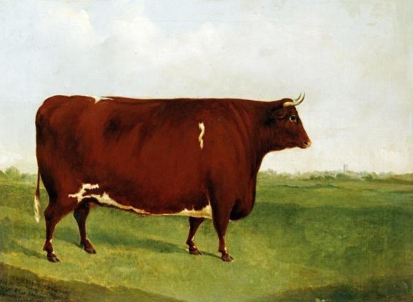 G. SINCLAIR - TWIN BEAST - Giclée on Canvas