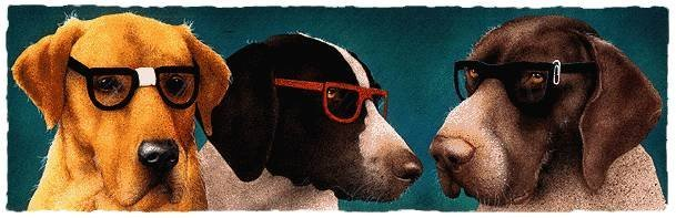 HAND SIGNED - WILL BULLAS - THE NERD DOGS