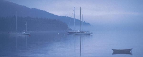 RUTH BURKE  - OCEAN - BAR HARBOR MISTY MORNING  -