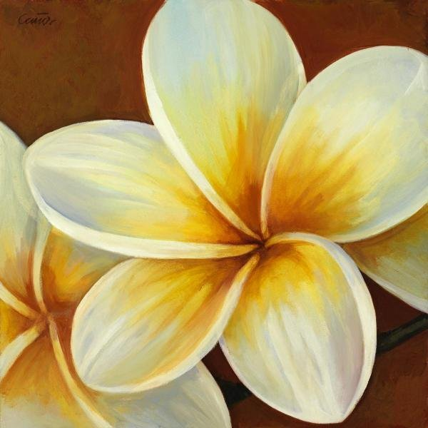 CLUNIA -FRANGIPANI I - GICLÉE ON CANVAS