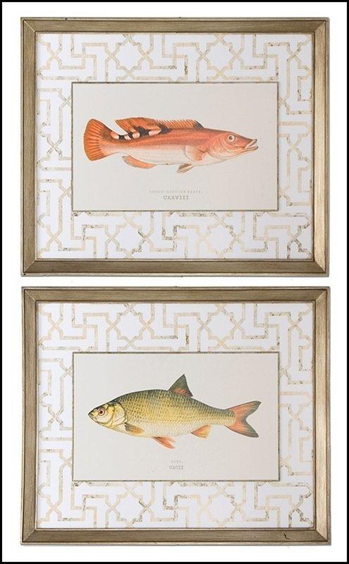 WRASS AND RUDD FISH ART, S/2
