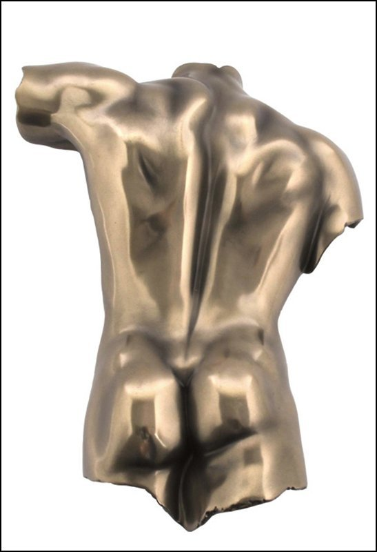 WALL PLAQUE MALE TORSO BACK - BRONZE