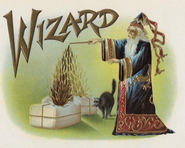 HALLOWEEN - WIZARD