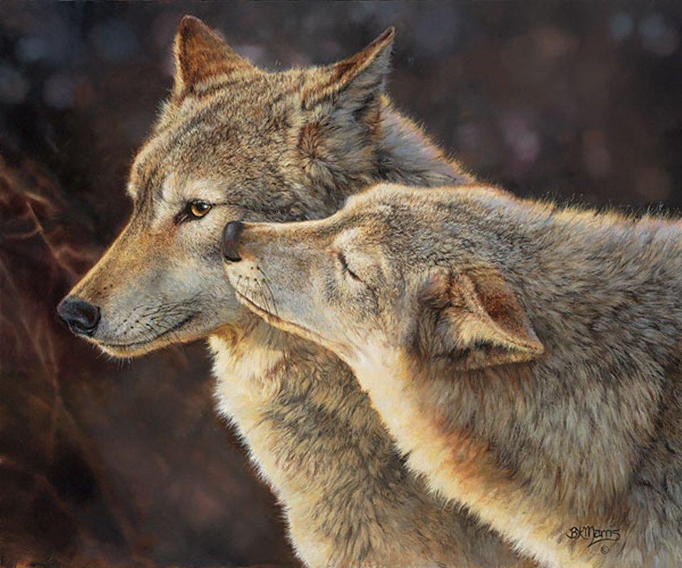 WOLF KISS - BONNIE MARRIS