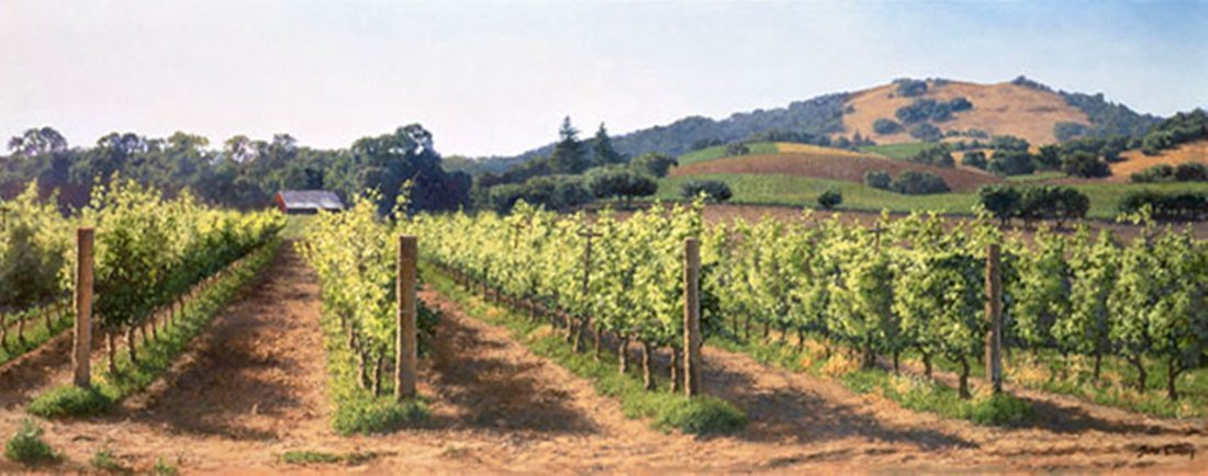 VINEYARD BEFORE THE HARVEST - JUNE CAREY