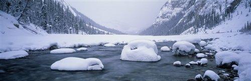 David Evans  - North Saskatchewan River by David Evans