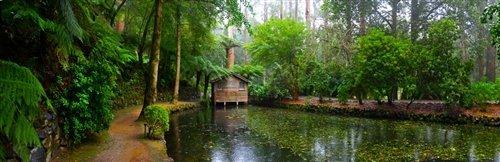 Sean Davey  - Boathouse Alfred Nicholas Gardens.