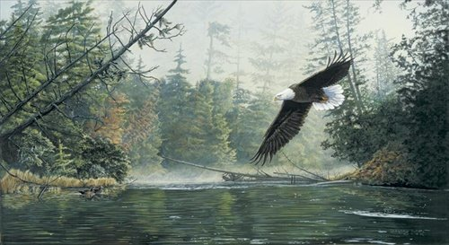 Greg Clair  - OUT OF THE MIST CANVAS LIMITED EDITION
