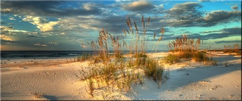 Doug Cavanah  - Sand Dunes Sunshine Coast by Doug