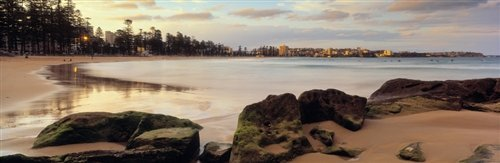 David Evans  - Manly Beach by David Evans