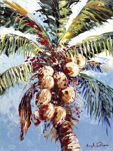 Joseph LaPierre - Colorful Coconuts 24x32
